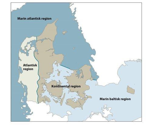 danmarks regioner kort